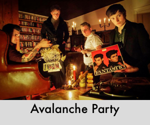Avalanche Party